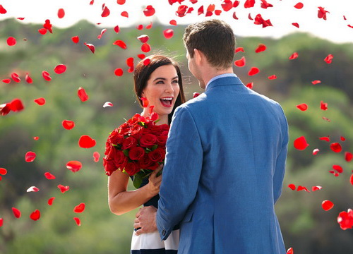 Red Roses Proposal
